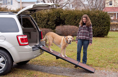 Top 10 Best Dog Ramps Dog Stairs For Car Beds Reviews In 2019