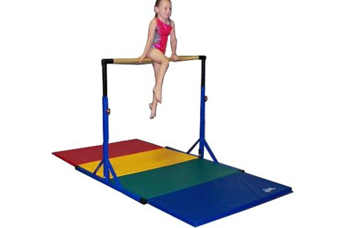 Team Sports Best Choice -Gymnastics Pro-Deluxe High Bar
