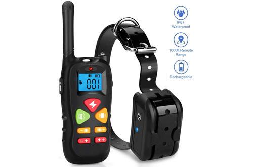 Remote Dog Training Collar for Small & Medium Dog