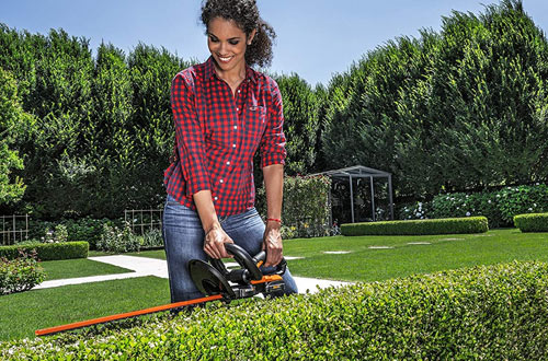 Worx WG255.1 20V Cordless Electric Hedge Trimmer