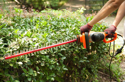 GARCARE Long Handle Corded Hedge Trimmer with Dual Laser Blade