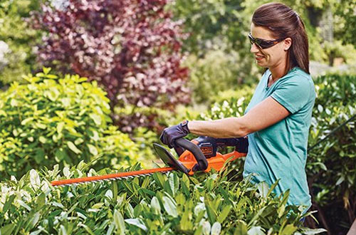 BLACK+DECKER LHT321FF 20V Powercut Hedge Trimmer