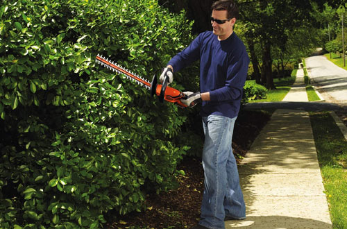 BLACK+DECKER LHT2220 20V Lithium-Ion Battery Hedge Trimmer