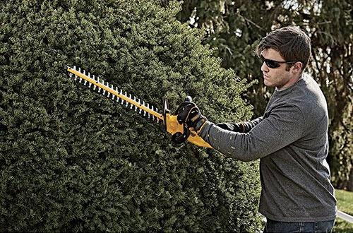 DEWALT DCHT820B 20v Max Battery-Powered Hedge Trimmer
