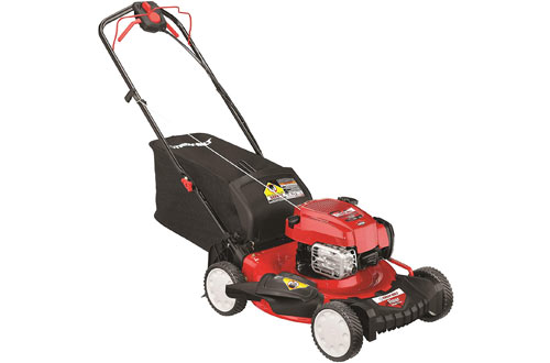Top 10 Best Electric Riding Lawn Mowers Reviews In 2020