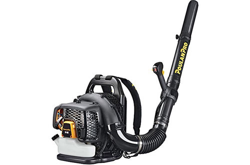 Poulan Pro 967087101 Gas Cordless Backpower Blower