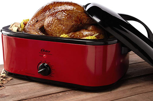 Oster 16-Quart Smoker-Roaster Oven
