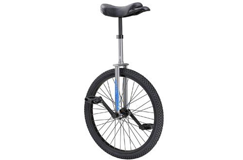 Diamondback Bicycle 24-Inch LX Wheel Unicycle