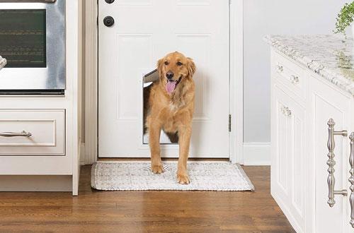 PetSafe Aluminum Pet Door for Dogs and Cats - Tinted Vinyl Flap