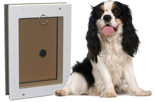 Freedom Extreme Weather Dog Door in Wall with Insulated Flap