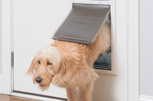 PetSafe Extreme Small Door for Dogs and Cats