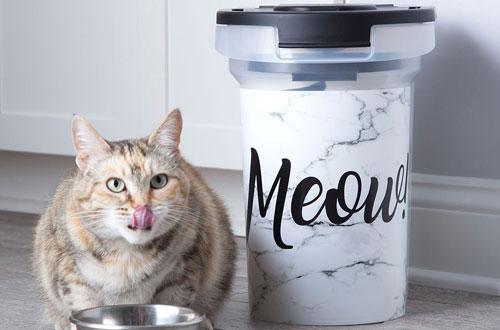 Paw Prints Plastic Pet Food Storage Container