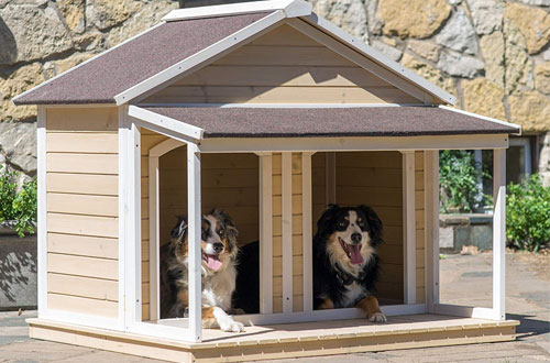 Boomer & George Duplex Large Wood Dog House for 2 Dogs