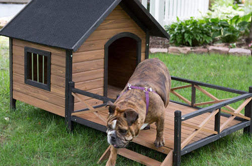 Boomer & George Outdoor Large Dog House