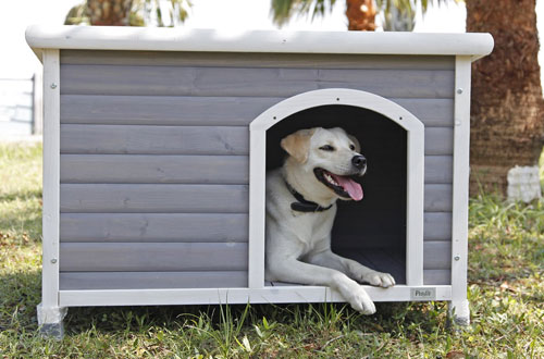 Petsfit Wooden Dog House for Outdoors