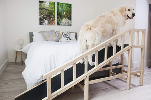 Gentle Rise Small and Large Dog Bed Ramp -120 LBS