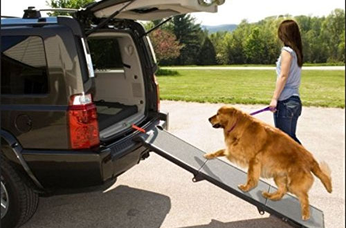 Pet Gear Portable Tri-Fold Pet Ramp for Dogs & Cats - 200lbs