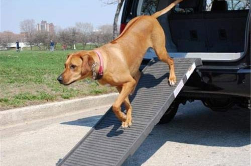 PetStep Outdoor Original Folding Pet Ramp for Truck