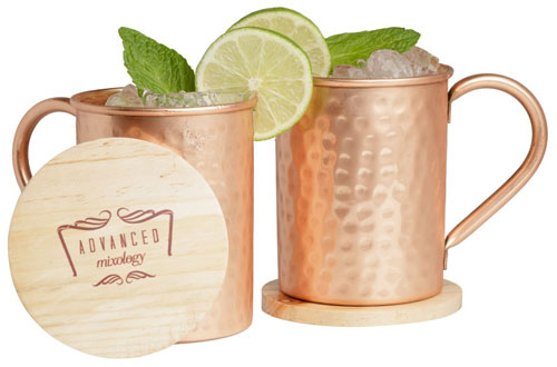 Advanced Mixology Pure Copper Moscow Mule Gift Set
