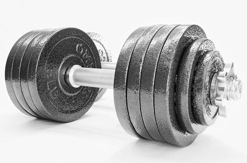 Omnie Adjustable Dumbbells for Crossfit WOD Weightlifting & Bodybuilding