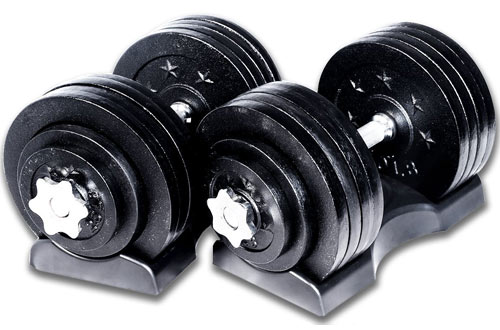 Ringstar Starring 65 105 200 Lbs Adjustable Weight Dumbbells