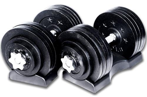 Ringstar Starring 65 105 200 Lbs Adjustable Weight Dumbbells