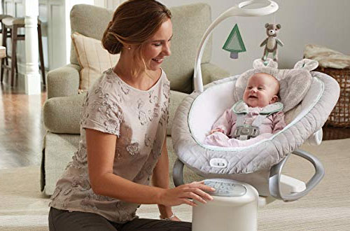 Graco Soother Baby Bouncer Swing with Removable Rocker