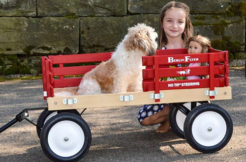 Classic BerlinF310-SS ModelFlyer Red Wagon for Kids