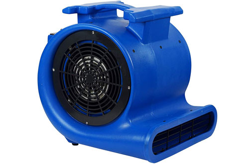 Mounto 3-Speed Air Mover Blower & Monster Floor Carpet Dryers