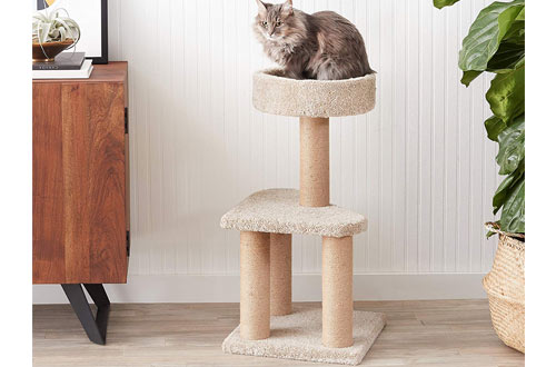 AmazonBasics Medium Cat Tree with Scratching Posts