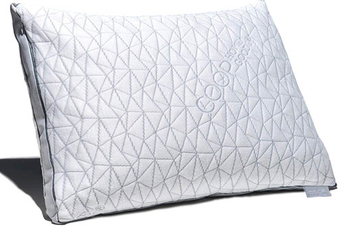 Coop Home Goods Memory Foam Pillow with Cooling Zippered Cover