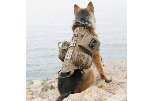 OneTigris Tactical Dog