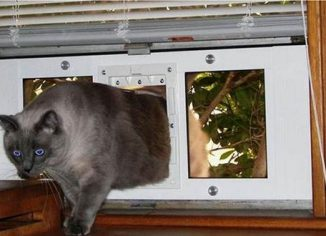 """Ideal Pet Products Window Sash Pet Door7""""x 11"""" Flap"""