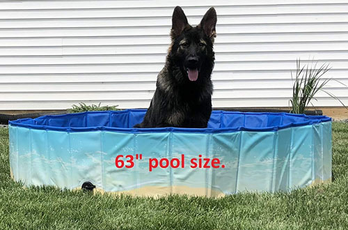 Midlee Foldable & Portable Outdoor Dog Bathing Tub