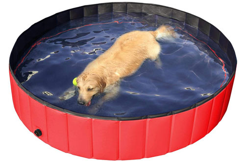 Yaheetech Foldable Large Dog Bathing Swimming Tub Pool
