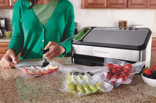 FoodSaver V4840 2-in-1 Silver Vacuum Sealer Machine