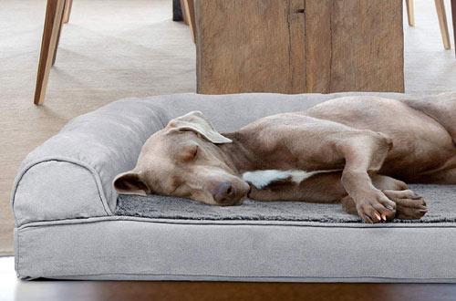 FurHavenLarge Pet Bedfor Dogs & Cats