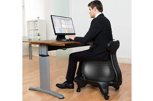 LuxFitPremium Fitness Exercise Ball Desk Chairs