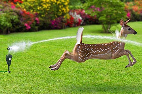 Hoont Cobra Garden Motion Sensor Sprinklers -Animal Rodent Repellent