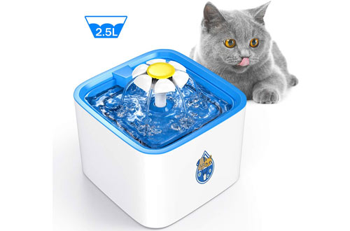 Water Dispenser for Cats
