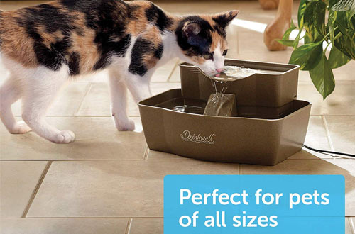 PetSafe Drinkwell Plastic Drinking Fountains
