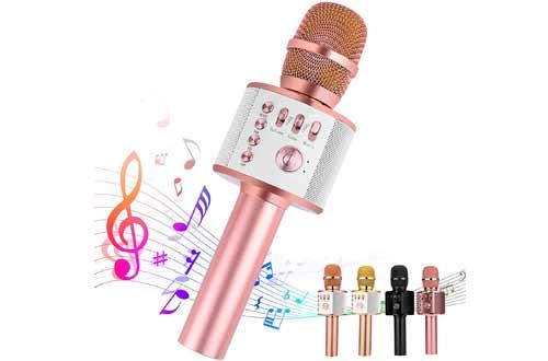 Ankuka Portable Karaoke Wireless Microphones