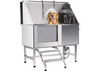 Dog Baths